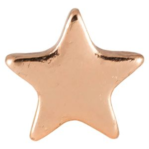Picture of Rose Gold Star Charm